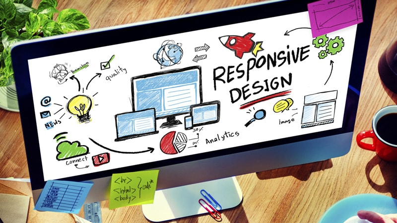 Looking For A Web Design Agency? Don't miss these traits! | Wild Web